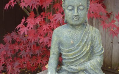 Would the Buddha Eat An Ice Cream Cone?