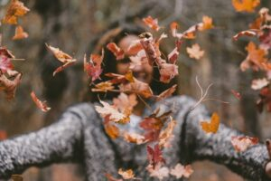 a woman tossing leaves towards you
